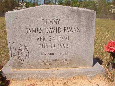 EVANS, JAMES DAVID - Calhoun County, Arkansas | JAMES DAVID EVANS - Arkansas Gravestone Photos