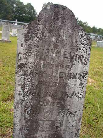 EVINS, CAPT, JOHN - Calhoun County, Arkansas | JOHN EVINS, CAPT - Arkansas Gravestone Photos