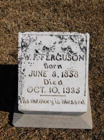 FERGUSON, W F - Calhoun County, Arkansas | W F FERGUSON - Arkansas Gravestone Photos