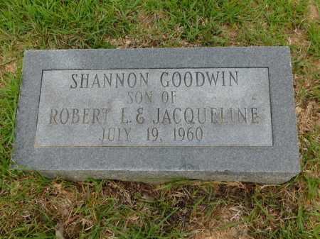 GOODWIN, SHANNON - Calhoun County, Arkansas | SHANNON GOODWIN - Arkansas Gravestone Photos
