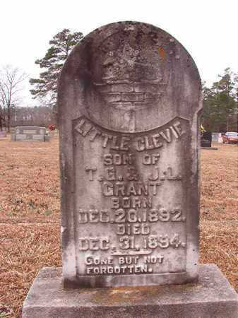 GRANT, CLEVIE - Calhoun County, Arkansas | CLEVIE GRANT - Arkansas Gravestone Photos