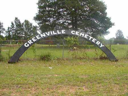 *GREENVILLE CEMETERY,  - Calhoun County, Arkansas |  *GREENVILLE CEMETERY - Arkansas Gravestone Photos
