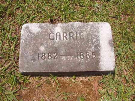 GRESHAM, CARRIE - Calhoun County, Arkansas | CARRIE GRESHAM - Arkansas Gravestone Photos