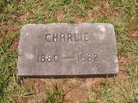 GRESHAM, CHARLIE - Calhoun County, Arkansas | CHARLIE GRESHAM - Arkansas Gravestone Photos