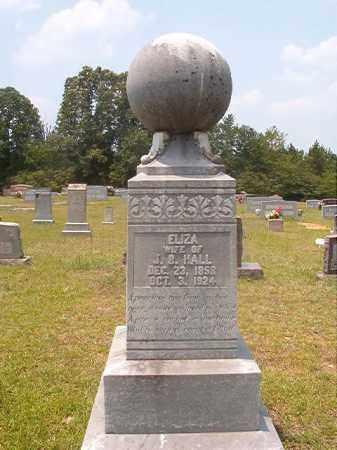 HALL, ELIZA - Calhoun County, Arkansas | ELIZA HALL - Arkansas Gravestone Photos