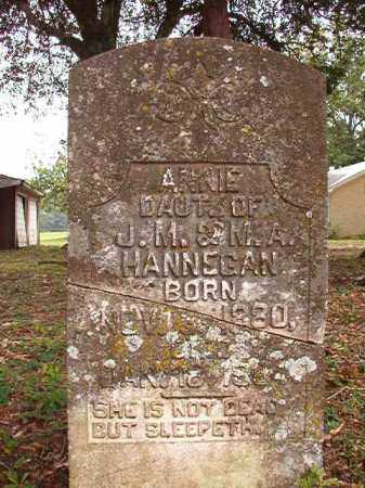 HANNEGAN, ANNIE - Calhoun County, Arkansas | ANNIE HANNEGAN - Arkansas Gravestone Photos