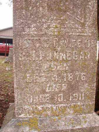 HANNEGAN, NETTIE G - Calhoun County, Arkansas | NETTIE G HANNEGAN - Arkansas Gravestone Photos