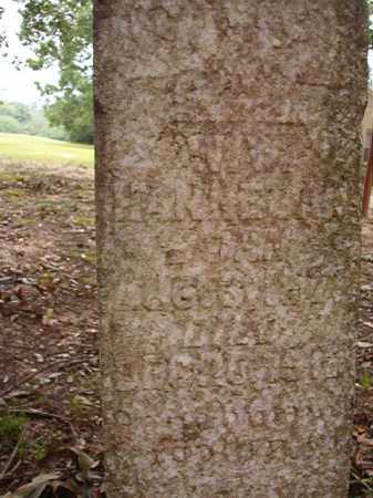 HANNEGAN, W W - Calhoun County, Arkansas | W W HANNEGAN - Arkansas Gravestone Photos