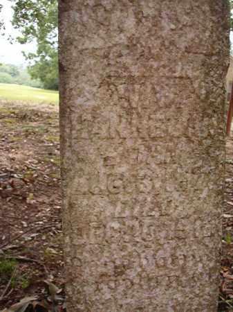 HANNEGAN, W W - Calhoun County, Arkansas | W W HANNEGAN - Arkansas Gravestone Photos