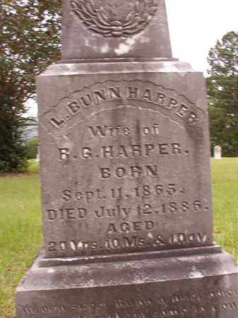HARPER, L - Calhoun County, Arkansas | L HARPER - Arkansas Gravestone Photos