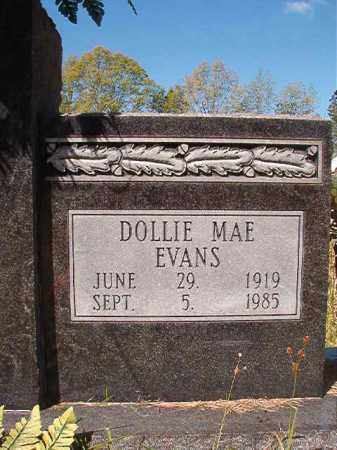 EVANS HARRELL, DOLLIE MAE (CLOSEUP) - Calhoun County, Arkansas | DOLLIE MAE (CLOSEUP) EVANS HARRELL - Arkansas Gravestone Photos