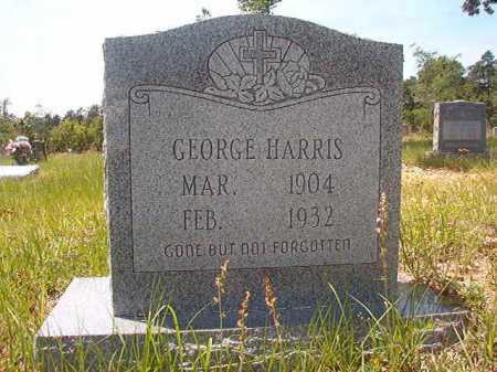 HARRIS, GEORGE - Calhoun County, Arkansas | GEORGE HARRIS - Arkansas Gravestone Photos