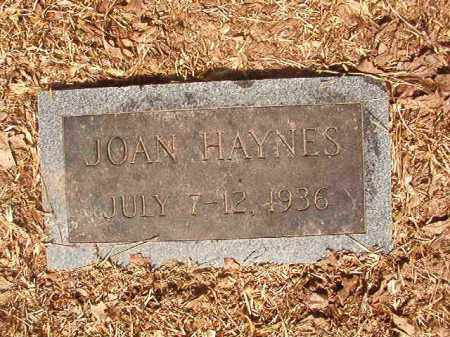 HAYNES, JOAN - Calhoun County, Arkansas | JOAN HAYNES - Arkansas Gravestone Photos