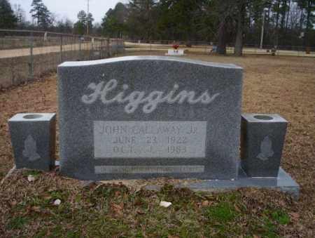 HIGGINS JR., JOHN CALAWAY - Calhoun County, Arkansas | JOHN CALAWAY HIGGINS JR. - Arkansas Gravestone Photos