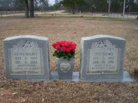 HOLMES, ARLICE - Calhoun County, Arkansas | ARLICE HOLMES - Arkansas Gravestone Photos