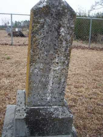 HOLMES, T.P. - Calhoun County, Arkansas | T.P. HOLMES - Arkansas Gravestone Photos