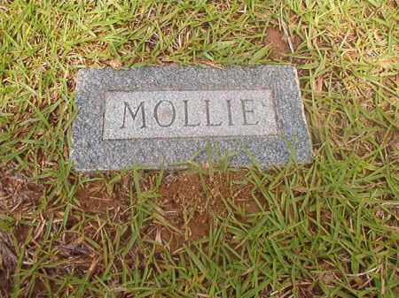 HORNADAY, MOLLIE - Calhoun County, Arkansas | MOLLIE HORNADAY - Arkansas Gravestone Photos