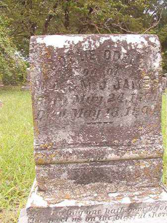 JAMES, COLLIE ODELL - Calhoun County, Arkansas | COLLIE ODELL JAMES - Arkansas Gravestone Photos