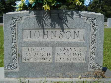JOHNSON, CICERO - Calhoun County, Arkansas | CICERO JOHNSON - Arkansas Gravestone Photos