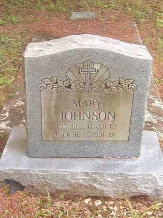 JOHNSON, MARY - Calhoun County, Arkansas | MARY JOHNSON - Arkansas Gravestone Photos
