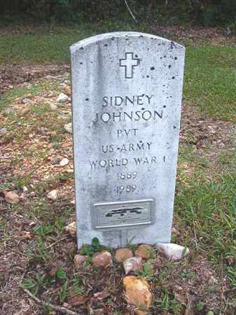 JOHNSON (VETERAN WWI), SIDNEY - Calhoun County, Arkansas | SIDNEY JOHNSON (VETERAN WWI) - Arkansas Gravestone Photos