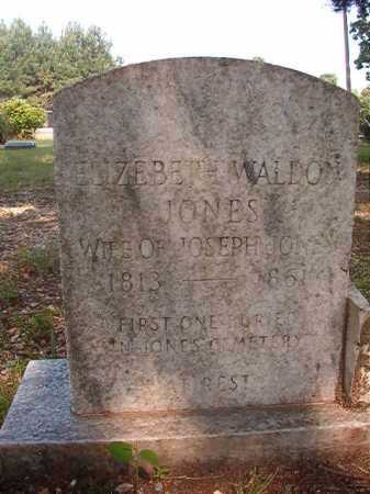WALDON JONES, ELIZEBETH - Calhoun County, Arkansas | ELIZEBETH WALDON JONES - Arkansas Gravestone Photos