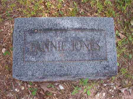 JONES, FANNIE - Calhoun County, Arkansas | FANNIE JONES - Arkansas Gravestone Photos