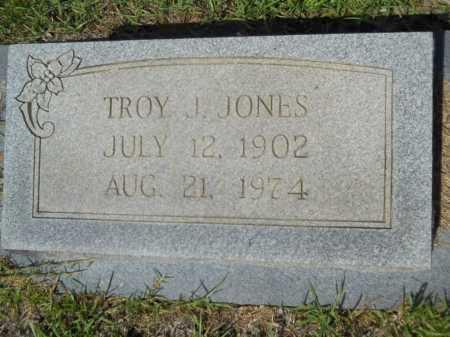 JONES, TROY J - Calhoun County, Arkansas | TROY J JONES - Arkansas Gravestone Photos