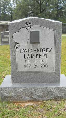 LAMBERT, DAVID ANDREW - Calhoun County, Arkansas | DAVID ANDREW LAMBERT - Arkansas Gravestone Photos