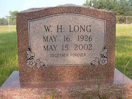 LONG, W H - Calhoun County, Arkansas | W H LONG - Arkansas Gravestone Photos
