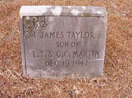 MARTIN, JAMES TAYLOR - Calhoun County, Arkansas | JAMES TAYLOR MARTIN - Arkansas Gravestone Photos