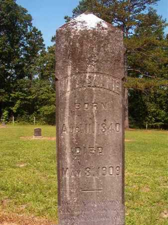 MCKINNIE, W W - Calhoun County, Arkansas | W W MCKINNIE - Arkansas Gravestone Photos