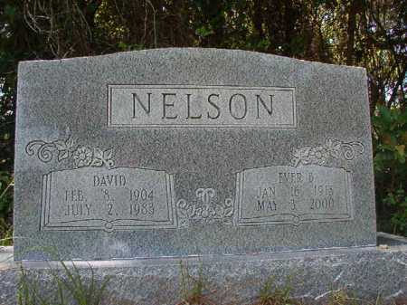 NELSON, EVER B - Calhoun County, Arkansas | EVER B NELSON - Arkansas Gravestone Photos