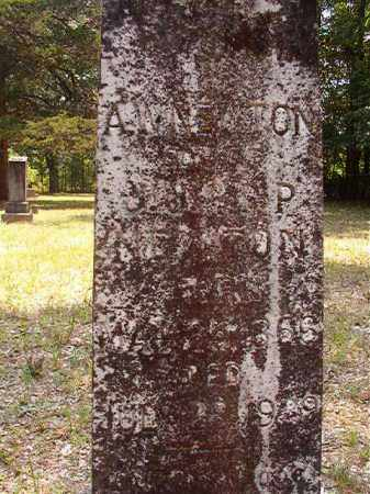 NEWTON, A WILEY - Calhoun County, Arkansas | A WILEY NEWTON - Arkansas Gravestone Photos