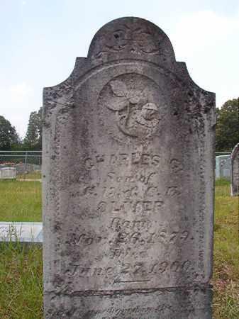 OLIVER, CHARLES G - Calhoun County, Arkansas | CHARLES G OLIVER - Arkansas Gravestone Photos