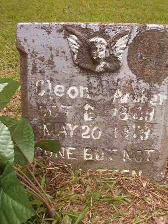 PARKER, CLEON - Calhoun County, Arkansas | CLEON PARKER - Arkansas Gravestone Photos