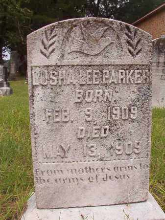 PARKER, LUSHA LEE - Calhoun County, Arkansas | LUSHA LEE PARKER - Arkansas Gravestone Photos