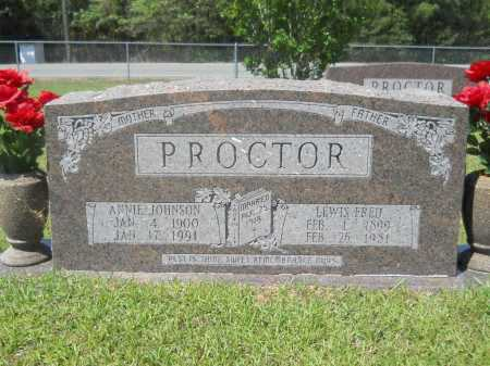 JOHNSON PROCTOR, ANNIE - Calhoun County, Arkansas | ANNIE JOHNSON PROCTOR - Arkansas Gravestone Photos