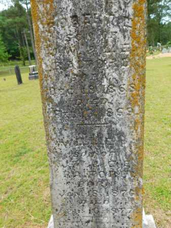 RAIFORD, WILLIE P - Calhoun County, Arkansas | WILLIE P RAIFORD - Arkansas Gravestone Photos