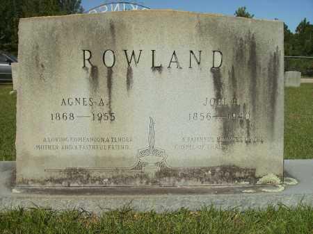 ROWLAND, AGNES A - Calhoun County, Arkansas | AGNES A ROWLAND - Arkansas Gravestone Photos