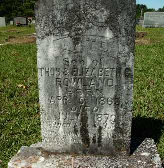 ROWLAND, ARTO - Calhoun County, Arkansas   ARTO ROWLAND - Arkansas Gravestone Photos