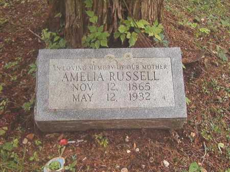 RUSSELL, AMELIA - Calhoun County, Arkansas | AMELIA RUSSELL - Arkansas Gravestone Photos