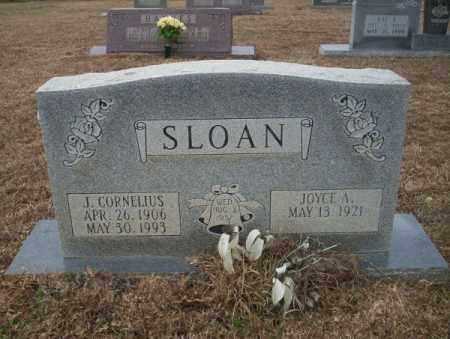 SLOAN, J. CORNELIUS - Calhoun County, Arkansas | J. CORNELIUS SLOAN - Arkansas Gravestone Photos