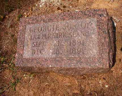 STRICKLAND, GEORGIE - Calhoun County, Arkansas | GEORGIE STRICKLAND - Arkansas Gravestone Photos