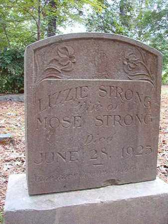 STRONG, LIZZIE - Calhoun County, Arkansas | LIZZIE STRONG - Arkansas Gravestone Photos