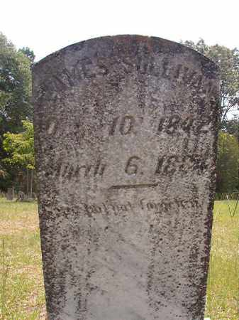 SULLIVAN, JAMES - Calhoun County, Arkansas | JAMES SULLIVAN - Arkansas Gravestone Photos
