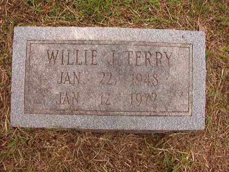 TERRY, WILLIE J - Calhoun County, Arkansas | WILLIE J TERRY - Arkansas Gravestone Photos