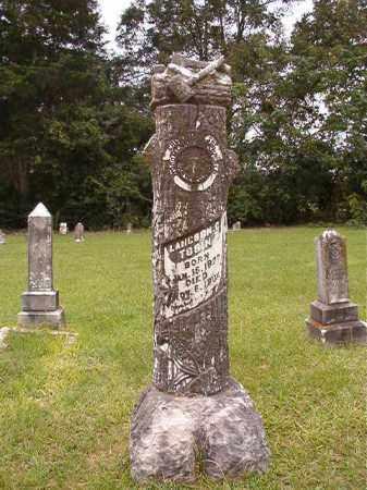 TOBIN, LANGDON G - Calhoun County, Arkansas | LANGDON G TOBIN - Arkansas Gravestone Photos