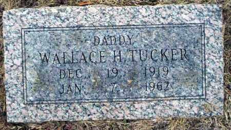 TUCKER, WALLACE H - Calhoun County, Arkansas | WALLACE H TUCKER - Arkansas Gravestone Photos