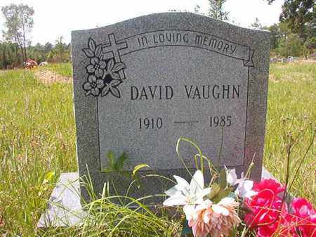 VAUGHN, DAVID - Calhoun County, Arkansas | DAVID VAUGHN - Arkansas Gravestone Photos